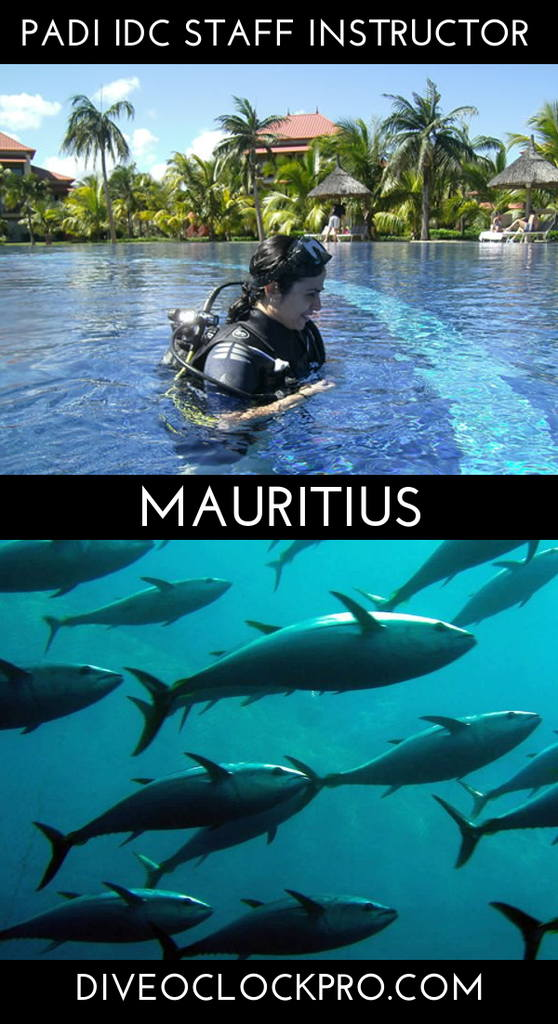 PADI IDC STAFF INSTRUCTOR - Bel Ombre - Mauritius
