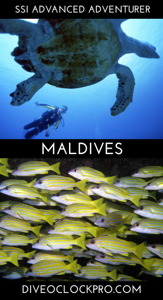 SSI Dive Course - Rannalhi, South Male Atoll, Maldives