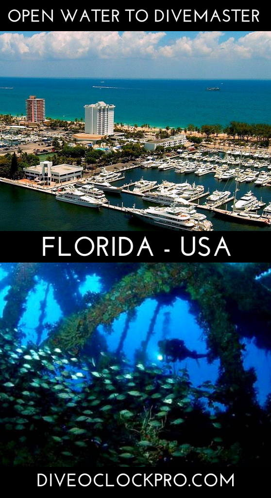 PADI Dive Course - Fort Lauderdale, United States