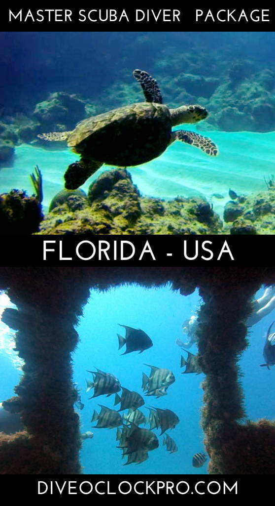 PADI Phase 1 OW to MSD - Fort Lauderdale - United States