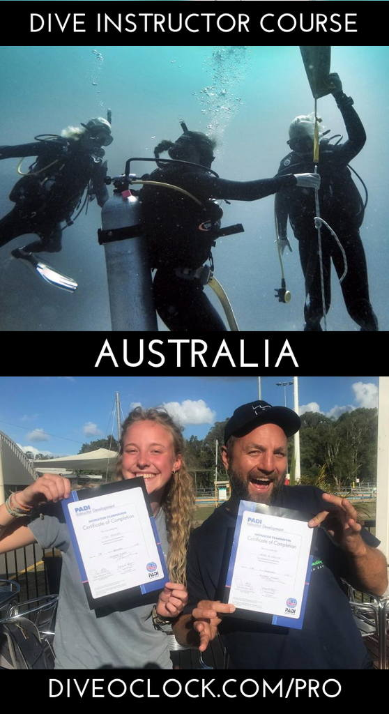 PADI Dive Instructor Course - Byron Bay, Australia