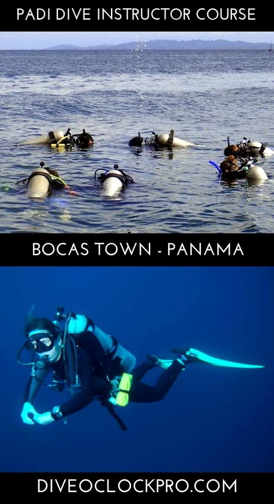 Instructor Course PADI IDC & IE Course - August 2021 - Bocas Town - Panama