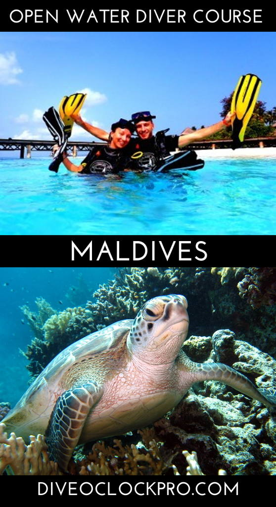 SSI OPEN WATER DIVER - Meedhupparu Island, Raa Atoll - Maldives