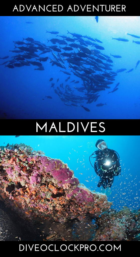 SSI ADVANCED ADVENTURER - Meedhupparu Island, Raa Atoll - Maldives