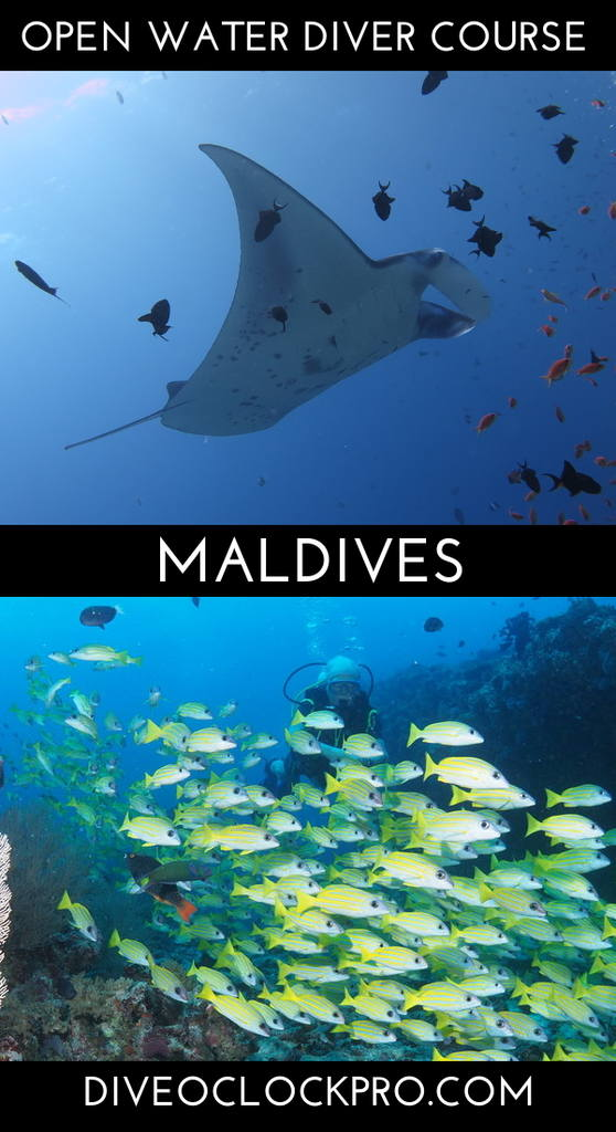 SSI OPEN WATER DIVER - Hudhuranfushi Island, North Male Atoll - Maldives
