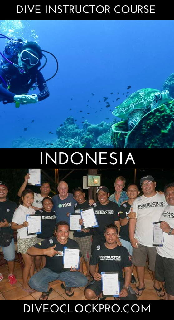 PADI Dive Instructor Course - Lembeh, Sulawesi, Indonesia