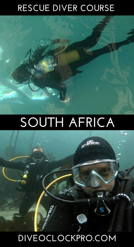 PADI Dive Course - Mossel Bay, South Africa