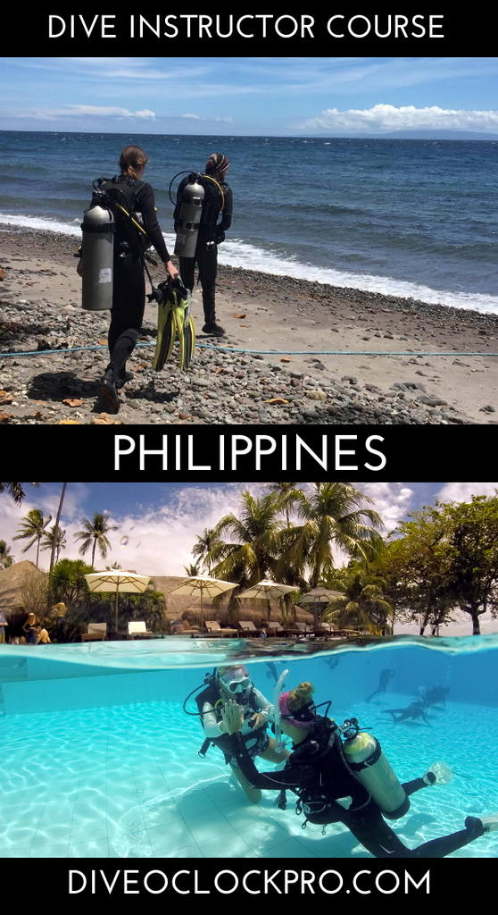 Instructor Course PADI 5* IDC with Research Assistant Internship - Dauin - Philippines