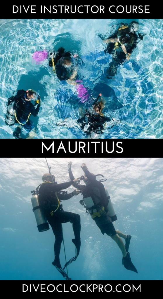 PADI Instructor Development Course with EFR Instructor, O2 Provider Specialty and Accommodation - Mauritius - Mauritius
