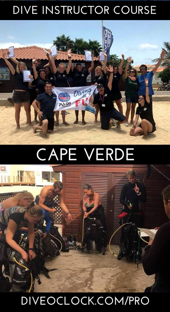 PADI Instructor Course IDC GOLD Package - * Internship Option * - Sal - Cape Verde