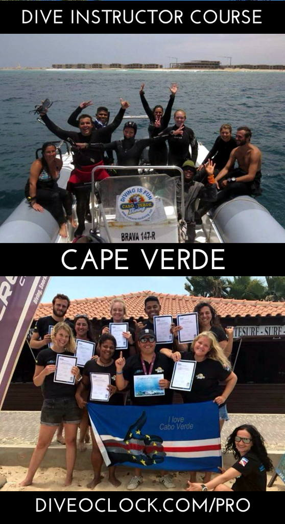 PADI Dive Instructor Course - Sal, Cape Verde