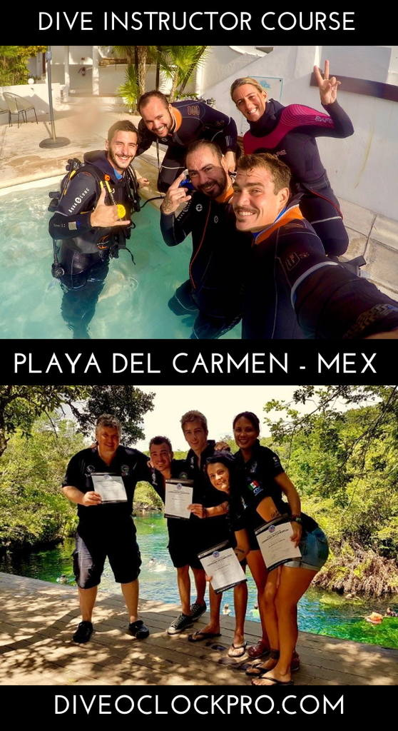 PADI Dive Instructor Course with Phocea Mexico  - Playa del Carmen - Mexico