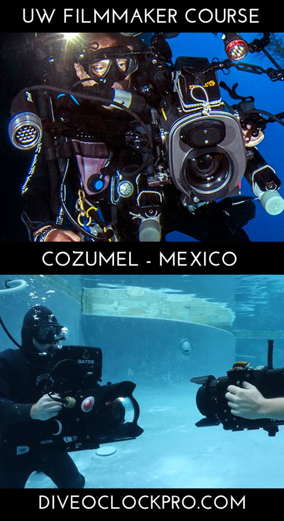 PADI THE UNDERWATER VIDEOGRAPHY CERTIFICATION COURSE - San Miguel de Cozumel - Mexico