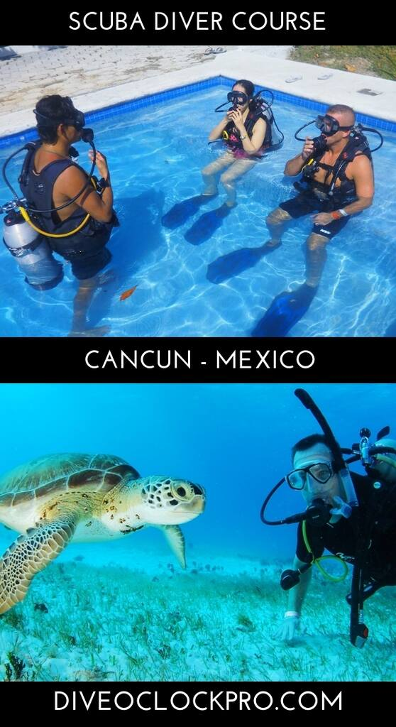 PADI SCUBA DIVER COURSE - Cancun - Mexico