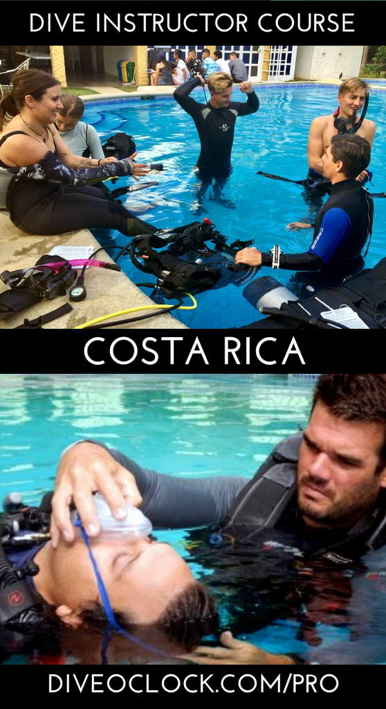 PADI Dive Instructor Course - Playas del Coco, Costa Rica