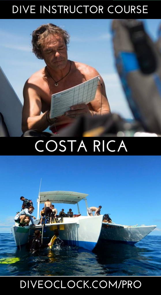 PADI Instructor Course IDC & MSDT - Playas del Coco - Costa Rica