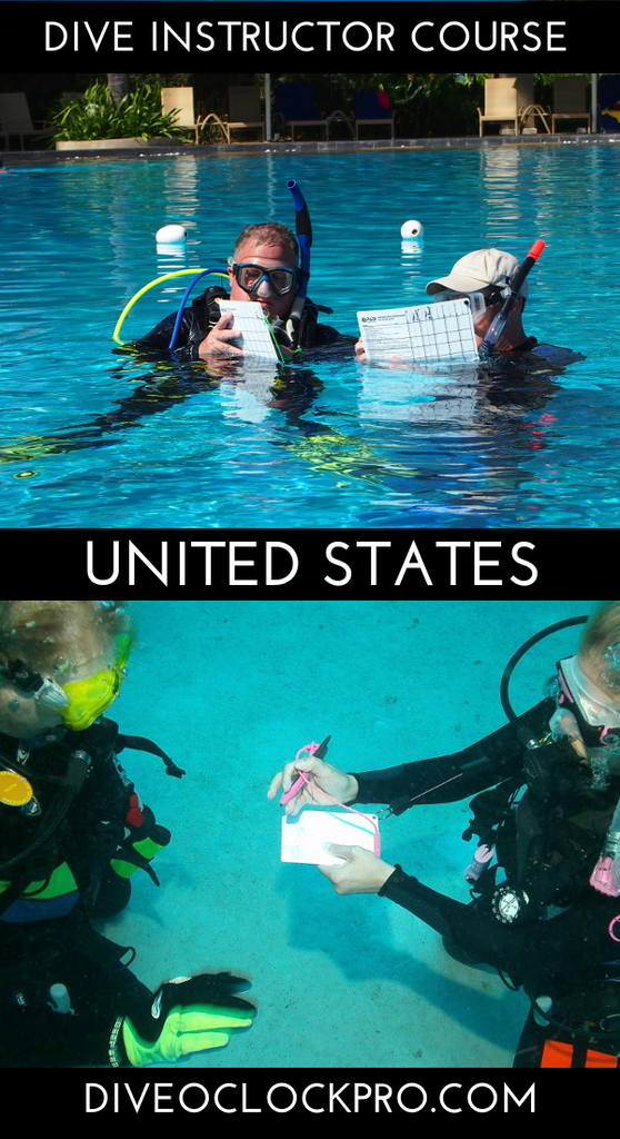 PADI Dive Instructor Course - Orland Park, United States