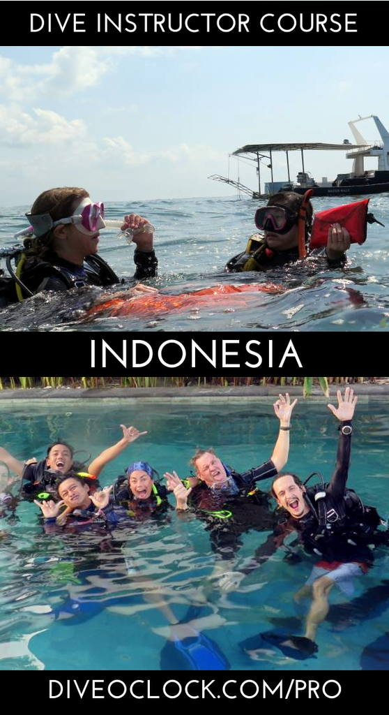 PADI Instructor Course IDC and EFRi Bali - Bali - Indonesia