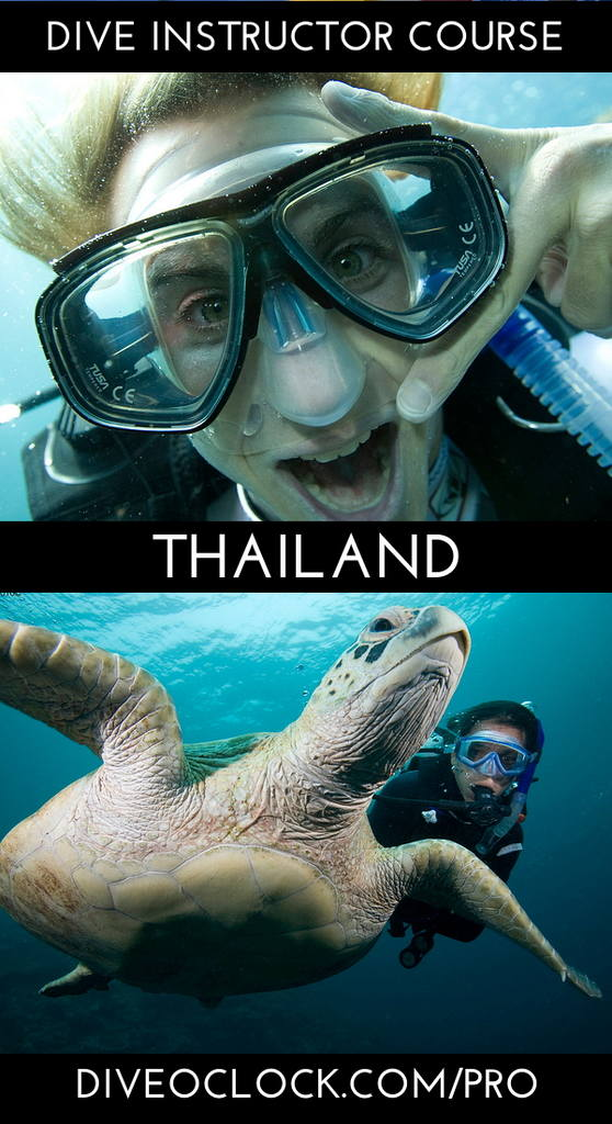 PADI Dive Instructor Course - Phuket, Thailand