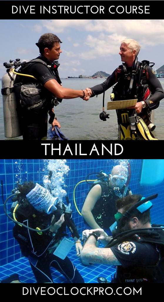 PADI Dive Instructor Course - Koh Tao, Thailand