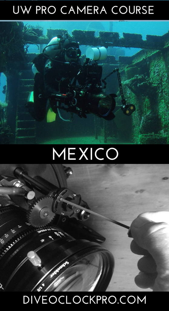 PADI *THE PROFESSIONAL UNDERWATER CAMERA OPERATOR* COURSE & CERTIFICATION  - Cozumel - Mexico