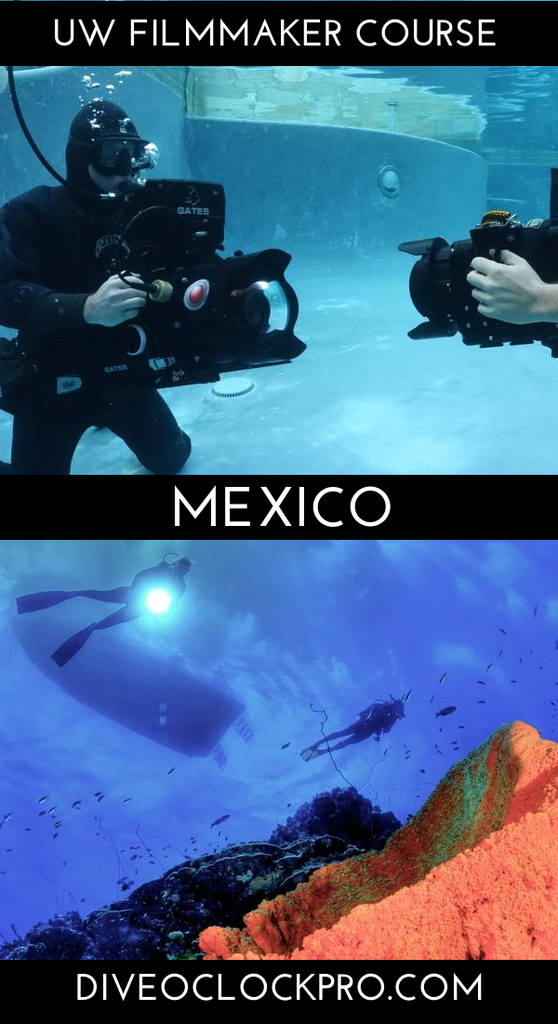 PADI THE UNDERWATER VIDEOGRAPHY COURSE & CERTIFICATION - Cozumel - Mexico