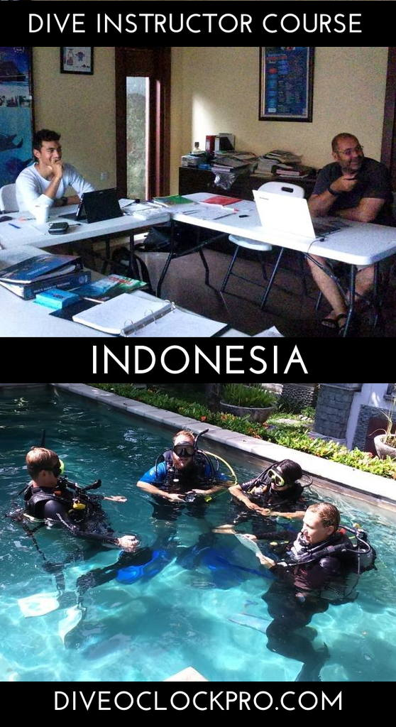 PADI Instructor Course IDC package Gold with EFRI - Bali - Indonesia