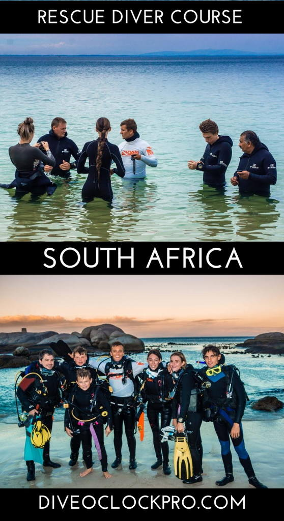 PADI Dive Course - Strand, South Africa