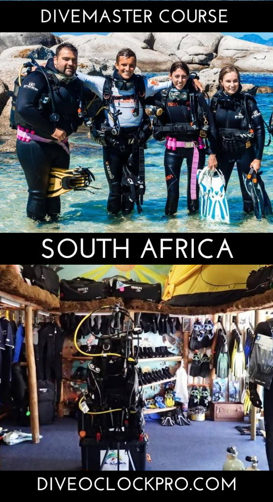 PADI Divemaster Course - Strand, South Africa