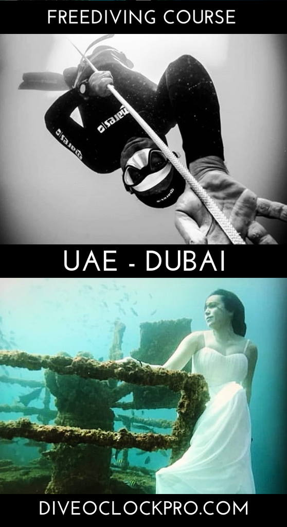 SSI Freediving Level 3 Course - Dubai - United Arab Emirates