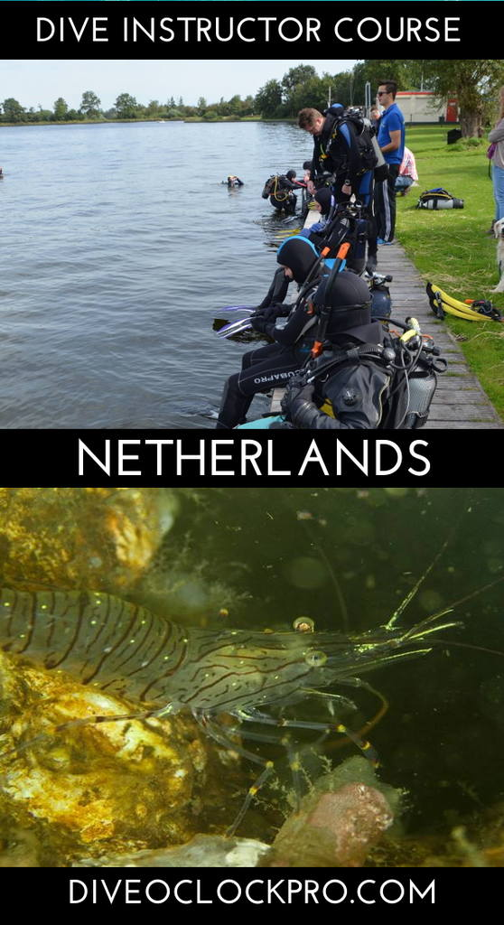 PADI Assistant Instructor - The Hague - Netherlands