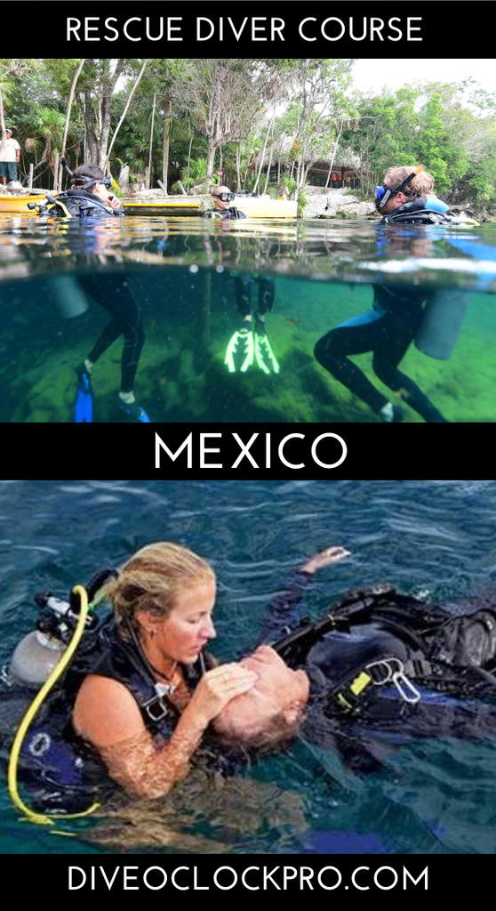 PADI Dive Course - Tulum, Mexico