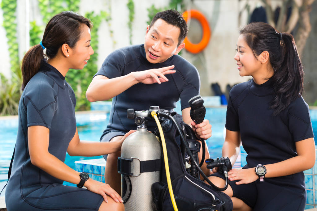 Search Dive Professional Courses