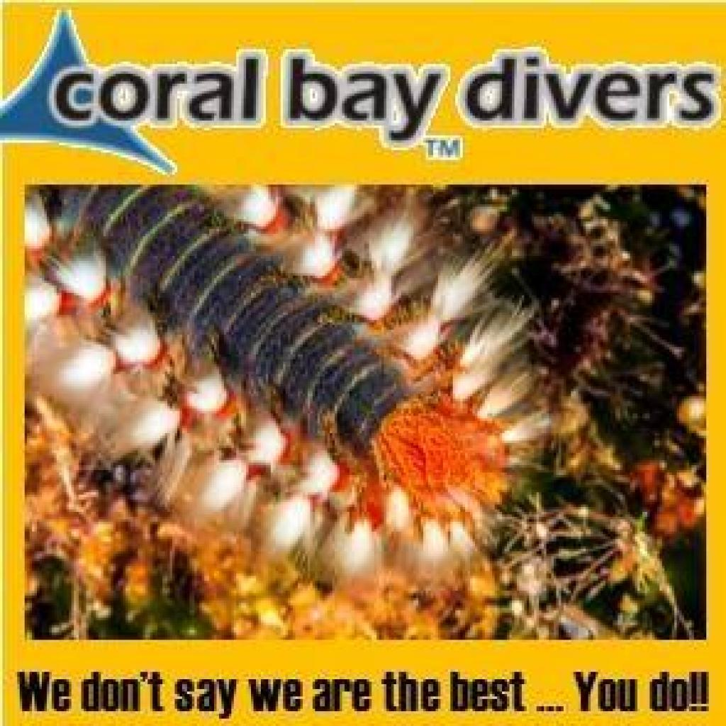 Coral Bay Divers